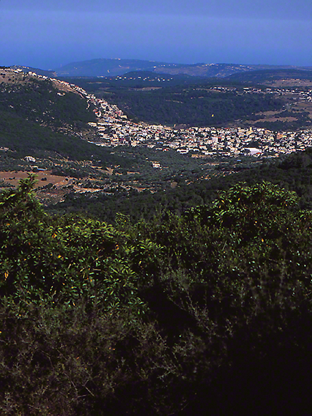 View of Lebanon from Mt. Meron butterfly photographed by Jeffrey Zablow
