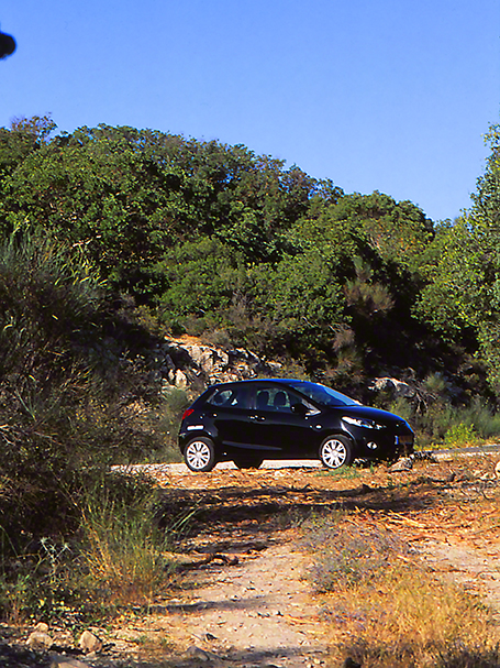 Rental car photographed by Jeff Zablow at Mt. Meron, Israel