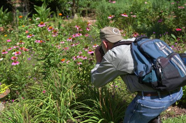 Jeff photographing Georgia's Butterflies and glooms in the Eatonton Briar Patch