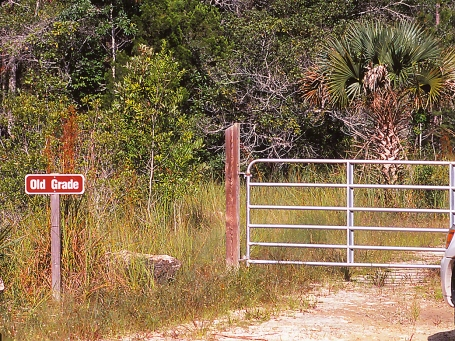 Old grade trail head photographed by Jeff Zablow in Big Bend Wildlife Management Area, FL