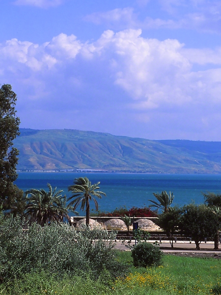 Capernum, photographed by Jeff Zablow at Lake Kinneret, Golan Heights, Israel