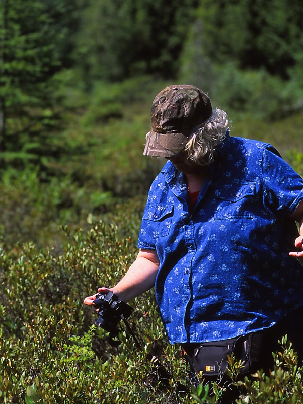 Barbara Ann Case, photographed by Jeff Zablow at Allenberg Bog in New York