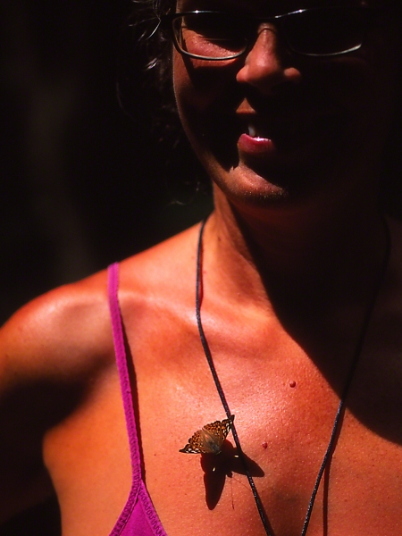 Hiker with Emperor butterfly, photographed by Jeff Zablow at Raccoon Creek State Park in Pennsylvania