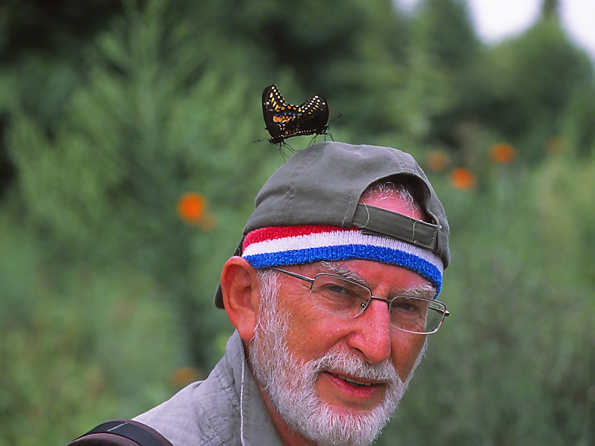 """Earring Series - Jeff Zablow with Black Swallowtail 'Earrings' - on Hat, at """"Butterflies and Blooms in the Briar Patch,"""" Eatonton, GA"""