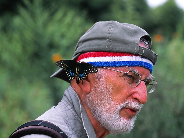 "Jeff with Black Swallowtails on his ears at ""Butterflies and Blooms in the Briar Patch,"" Eatonton, GA"