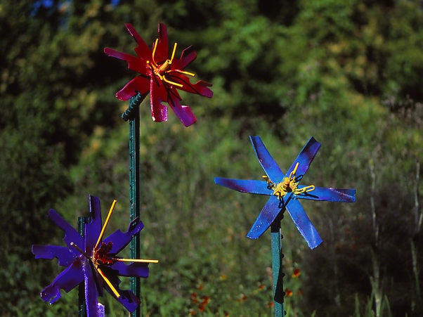 Flower sculptures photographed by Jeff Zablow at Butterflies and Blooms in the Briar Patch Habitat, GA