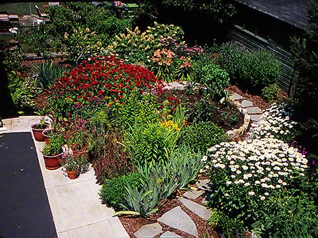 Jeff Zablow's Perennial Beds Pittsburgh, PA, 7/10/07