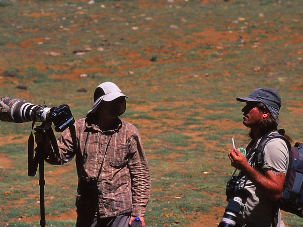 Birders photographed by Jeff Zablow at on Mt. Hermon, Israel